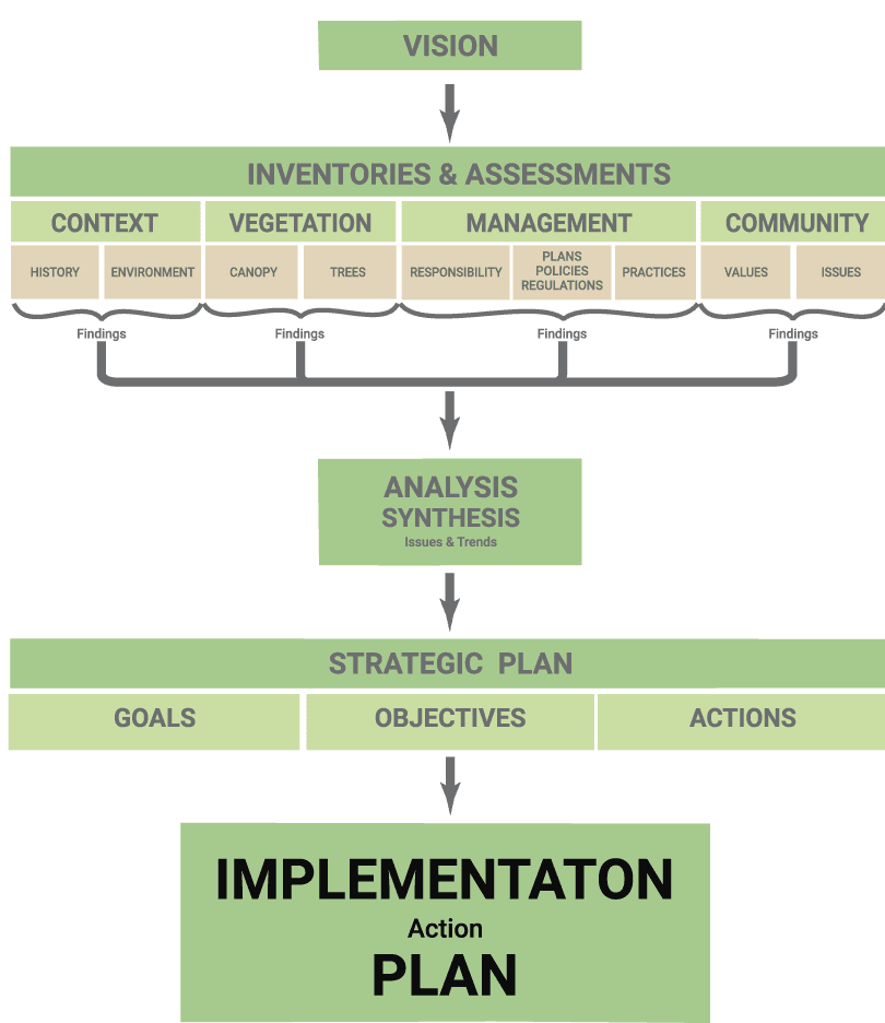 the development of an implementation plan